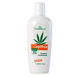 champu de cannabis contra la caida de cabello