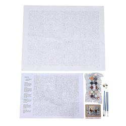 Lienzo tela de cáñamo con pintura acrilica 16 x 20 pulgadas DIY kit WOVELOT