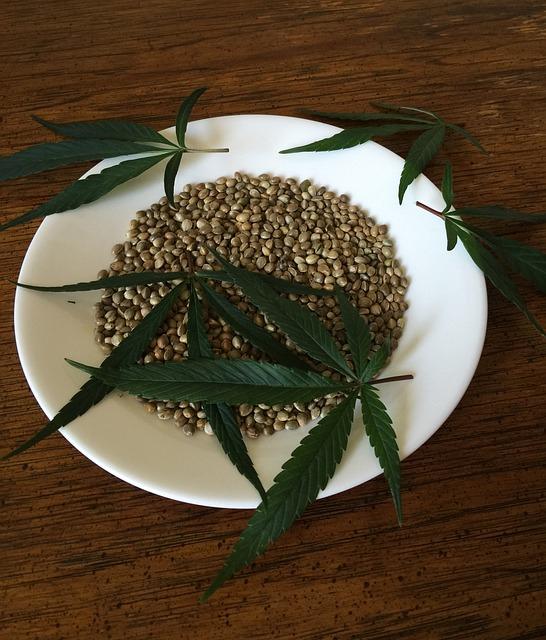semillas de cáñamo donde comprar